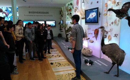 Visita ós Museos
